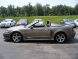2001 Mineral Grey Metallic Ford Mustang Saleen S281 Supercharged Convertible #57874114