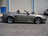 2001 Ford Mustang Saleen S281 Supercharged Convertible Data, Info and Specs