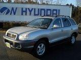 2004 Pewter Hyundai Santa Fe GLS #57875766