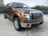 2012 Golden Bronze Metallic Ford F150 XLT SuperCrew 4x4 #57969575