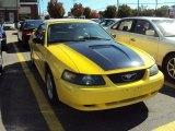 2002 Zinc Yellow Ford Mustang V6 Convertible #57875613