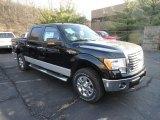 2011 Ebony Black Ford F150 XLT SuperCrew 4x4 #57969462