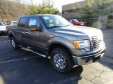 2011 Sterling Grey Metallic Ford F150 XLT SuperCrew 4x4 #57969460