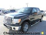 2011 Ebony Black Ford F150 XLT SuperCrew #57872659