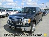 2011 Ebony Black Ford F150 XLT SuperCrew #57872658