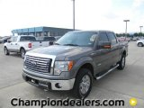 2011 Sterling Grey Metallic Ford F150 XLT SuperCrew 4x4 #57872651