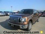 2011 Golden Bronze Metallic Ford F150 XLT SuperCrew #57872650