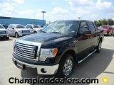 2011 Ebony Black Ford F150 XLT SuperCrew #57872648
