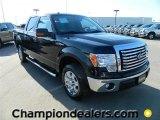 2011 Ebony Black Ford F150 XLT SuperCrew 4x4 #57872625