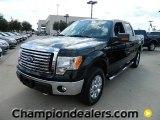 2011 Ebony Black Ford F150 XLT SuperCrew 4x4 #57872620