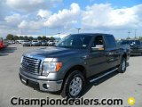 2011 Sterling Grey Metallic Ford F150 XLT SuperCrew 4x4 #57872600