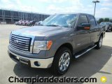 2011 Sterling Grey Metallic Ford F150 XLT SuperCrew #57872594