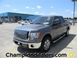 2011 Sterling Grey Metallic Ford F150 XLT SuperCrew #57872591