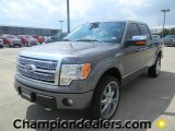 2011 Sterling Grey Metallic Ford F150 Platinum SuperCrew 4x4 #57872590
