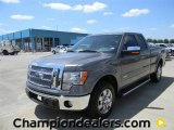 2011 Sterling Grey Metallic Ford F150 Lariat SuperCab #57872586