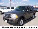 2003 Mineral Grey Metallic Ford Explorer XLT #57872455