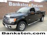 2011 Ebony Black Ford F150 XLT SuperCrew 4x4 #57872282