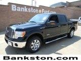 2011 Ebony Black Ford F150 XLT SuperCrew #57872266