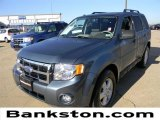 2010 Steel Blue Metallic Ford Escape XLT #57872204