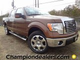 2012 Golden Bronze Metallic Ford F150 XLT SuperCrew #58238547
