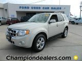 2009 Light Sage Metallic Ford Escape Limited V6 #58238285