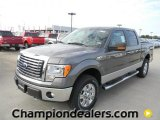 2011 Sterling Grey Metallic Ford F150 XLT SuperCrew 4x4 #58238256