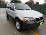 2006 Silver Metallic Ford Escape XLT V6 #58238871
