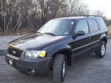 2006 Black Ford Escape XLT V6 4WD #58364471