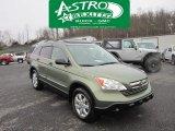 2008 Green Tea Metallic Honda CR-V EX 4WD #58364638