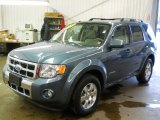 2010 Steel Blue Metallic Ford Escape Hybrid Limited 4WD #58364617