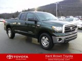 2010 Spruce Green Mica Toyota Tundra TRD Double Cab 4x4 #58397169