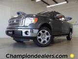 2011 Sterling Grey Metallic Ford F150 Lariat SuperCrew #58396601