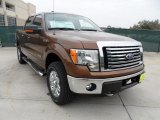 2012 Golden Bronze Metallic Ford F150 XLT SuperCrew 4x4 #58396769