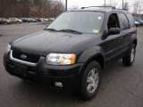 2003 Ford Escape Black Clearcoat