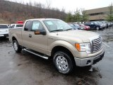 2012 Pale Adobe Metallic Ford F150 XLT SuperCab 4x4 #58501476