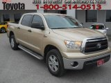 Sandy Beach Metallic Toyota Tundra in 2010