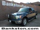 2011 Dark Blue Pearl Metallic Ford F150 XLT SuperCrew #58555073