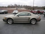 2001 Mineral Grey Metallic Ford Mustang Cobra Coupe #58608442
