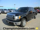 2011 Ebony Black Ford F150 XLT SuperCrew #58607791