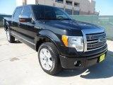 2010 Tuxedo Black Ford F150 Platinum SuperCrew #58608099