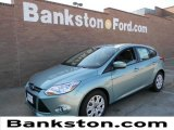 2012 Frosted Glass Metallic Ford Focus SE 5-Door #58664133