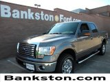 2011 Sterling Grey Metallic Ford F150 Texas Edition SuperCrew 4x4 #58683979