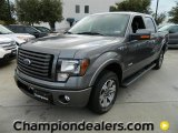 2011 Sterling Grey Metallic Ford F150 FX2 SuperCrew #58724519