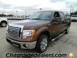 2012 Golden Bronze Metallic Ford F150 XLT SuperCrew #58782438