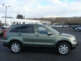 2009 Green Tea Metallic Honda CR-V EX-L 4WD #58782738