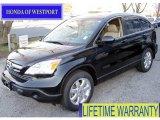 2009 Crystal Black Pearl Honda CR-V EX-L 4WD #58852619