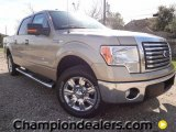 2012 Pale Adobe Metallic Ford F150 XLT SuperCrew #58852545