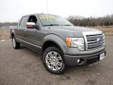2011 Sterling Grey Metallic Ford F150 Platinum SuperCrew 4x4 #58852436