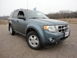 2010 Steel Blue Metallic Ford Escape XLT #58852433