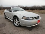 2003 Silver Metallic Ford Mustang V6 Convertible #58852418